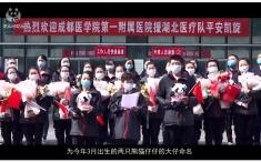"""中国网:2020年全球首对圈养大熊猫双胞胎名字揭晓:""""热干面""""""""蛋烘糕"""""""